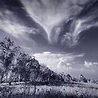 Rural 2 -#2 by danise tang