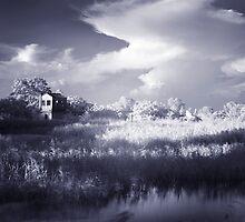 Rural 2 -#4 by danise tang