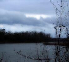 Dark Winters Day by DottieDees