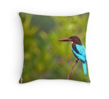 White Breasted Kingfisher - Sri Lanka Throw Pillow