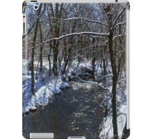 Winter In The Country iPad Case/Skin