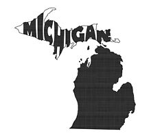 Michigan State Word Art by surgedesigns
