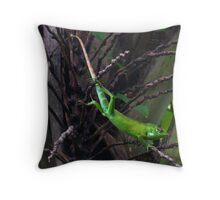 Green Forest Lizard - Sri Lanka Throw Pillow