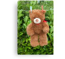 toy brown teddy bear hanging on line Canvas Print