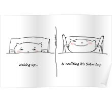 Waking up & realizing it's Saturday / Cat doodle Poster