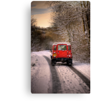 Out in the Snow Canvas Print