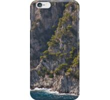 Rocky Residence iPhone Case/Skin