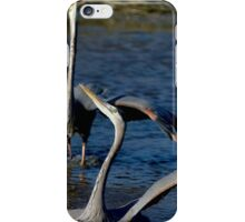Territorial Ballet iPhone Case/Skin