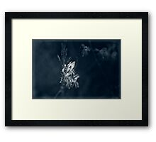In The Cool of the Night I Will Be There Framed Print