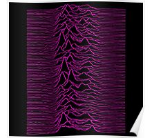 Pulsar waves - White&Pink  Poster