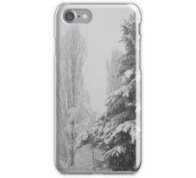 Snow iPhone Case/Skin