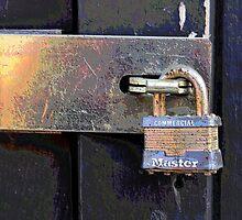 The Master Lock by Brian Gaynor