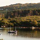 Lonesome boatmen - Dunboy Harbour, West Cork by Orla Flanagan