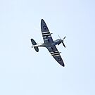 Spitfire by ten2eight