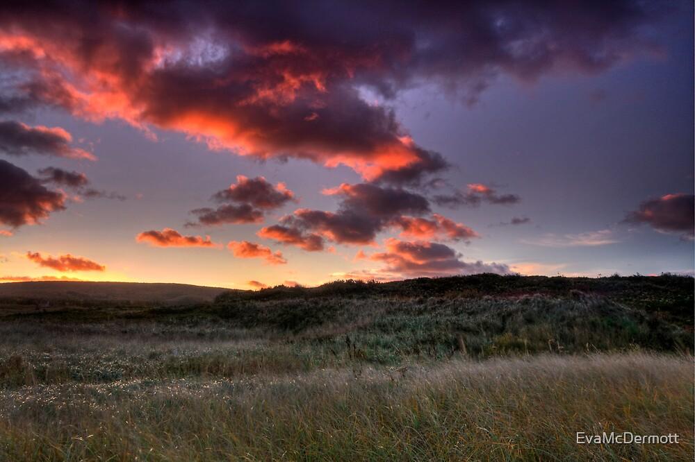Morning Dunes of Inverness by EvaMcDermott