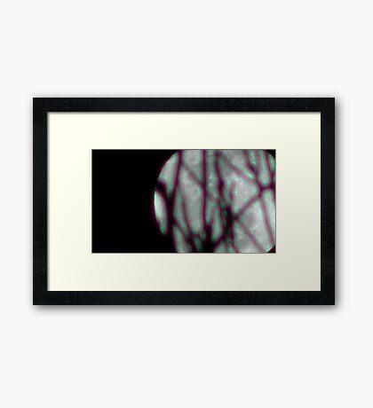 Moon Rise 004 Framed Print