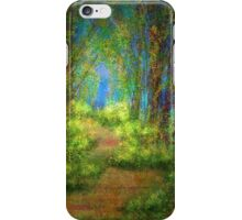 Landscape Impressions 01 iPhone Case/Skin