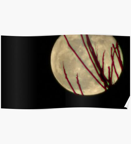 Moon Rise 009 Poster