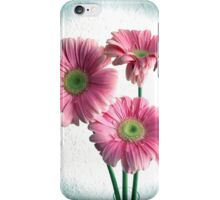 Spot Light On Gerbera Pink Daisies iPhone Case/Skin