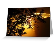 Sunset at Brazilian savannah Greeting Card