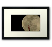 Moon Rise 014 Framed Print