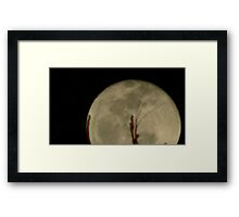 Moon Rise 015 Framed Print