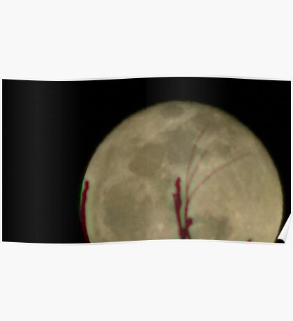 Moon Rise 015 Poster