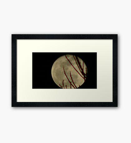 Moon Rise 016 Framed Print