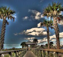Lets go to the beach, Englewood FL by LudaNayvelt