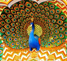 Peacock Fresco by stephen Spindler