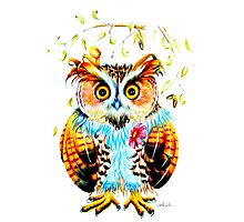 The most beautiful Owl Photographic Print