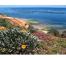 Port Noarlunga flowers and jettty Photographic Print