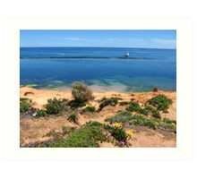 Port Noarlunga flowers and sail boat Art Print