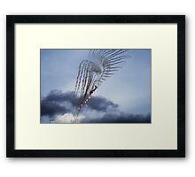 flare angel Framed Print