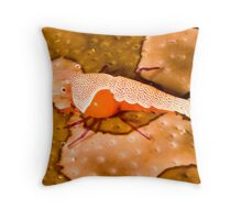 Emperor Shrimp on Sea Cucumber Throw Pillow