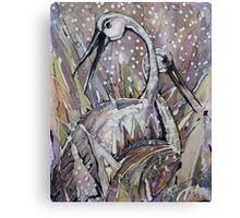 IBISES, The Love dance of Ibises Canvas Print