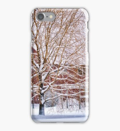 Winter Weeping Willow iPhone Case/Skin