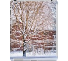 Winter Weeping Willow iPad Case/Skin