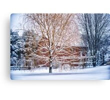 Winter Weeping Willow Canvas Print