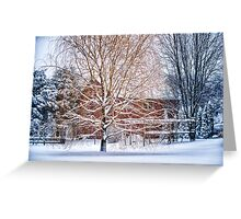Winter Weeping Willow Greeting Card