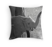 Little Squirt - Moremi Game Reserve,Botswana Throw Pillow