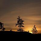 Golden Sunset by Stephen  Van Tuyl