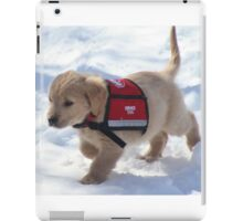 Hero In Training- Critter Crew iPad Case/Skin
