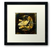 Viscious Circle Framed Print