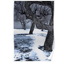 Snow covered Wasteland Poster