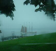 Bar Harbor Mist by Al Bourassa
