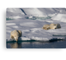 Chill Out and Relax Canvas Print