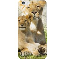 Mother Lion and Cub iPhone Case/Skin