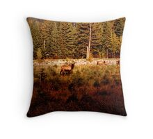 Elk Harem Throw Pillow