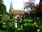 Spring in the Churchyard by Colin  Williams Photography